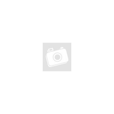 A társ - Linda Dillow